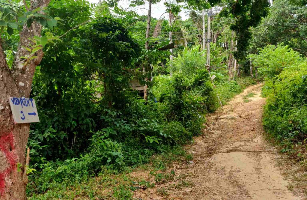 how to get to phi phi viewpoint