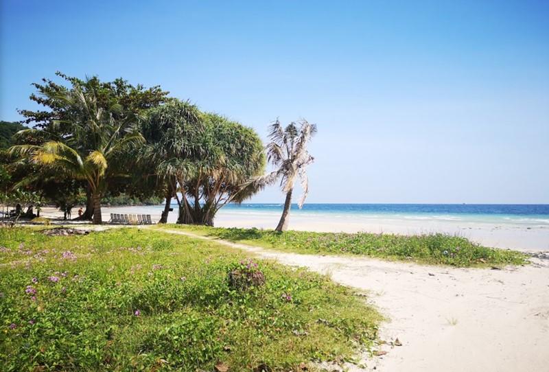 phi phi island beach loh moo dee