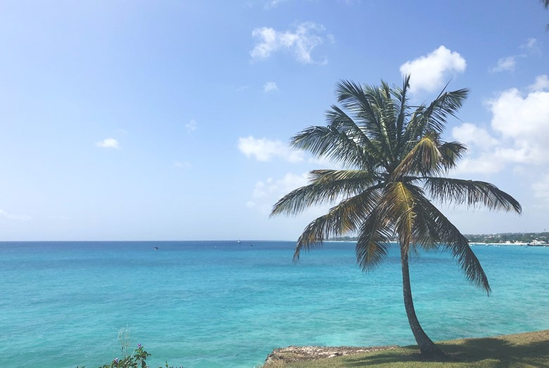where can americans travel now contries americans can travel to covid can americans travel to barbados now